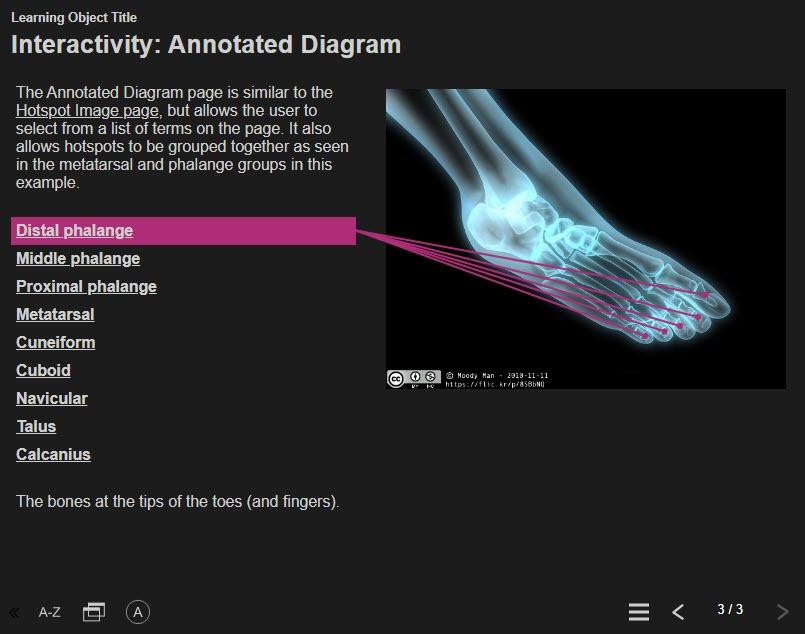 annotated_diagram_highlight.jpg